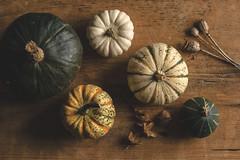(CarolienCadoni..) Tags: sonyslta99 sal85f14z pumpkins still stillife photography