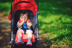 ! (M.K. Design) Tags:                       taiwan nantou puli ncnu university school family infant baby madebysweden swedish volvocartaiwan v40 v40cc v40crosscountry hatchback wagon  nikon d800e afs 105mmf14e ed bokeh hdr