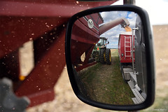 Harvest (Lance Merry) Tags: harvest illinois corn auger wagon semi truck load loading piatt county