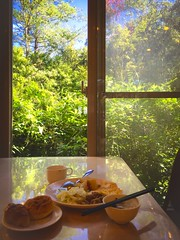 Wonderful Breakfast@ (Evo-PlayLoud) Tags: appleiphone6plus appleiphone6 iphone6plus iphone6 appleiphone 6plus 6 mobilesnapshot snapshot snapshots tree trees food eat green red breakfast        plant sunshine sunlight    blue bluesky sky   window taichung wulingfarm taiwan   photoshopexpress psexpress