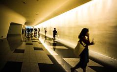 The corridor (Phg Voyager) Tags: bilding coridor people indoor color leica m9 18mm korea seoul theater girls silhouettes black yellow fun photography phgvoyager refelxion floor shape curves light dongdaemundesignplaza zahahadid