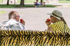 Tomatos (nrakowska) Tags: 2016 color fashion funny katowice may nataliarakowska people plener poland rakowska street warsaw zpaf love tomato old young