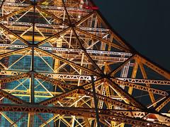 Skin of Steel (Fehlfokus) Tags: tokyo tokyotower japan