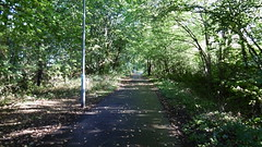 Edinburgh - Leith old railway (Caledonian route)  Trackbed towards Pilton (dave_attrill) Tags: edinburgh haymarket leith caledonian railway disused trackbed granton carstairs lms cycle route path bridleway footpath remains pilton east