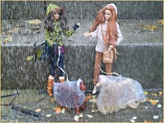 One rainy day (barbie for Mary) Tags: barbie mattel penelpe cruz basic doll dogs afghanhound terier autumn rain gear outdoor exterior az azchallenge r raingear liv coat leaves photography mary fashion model toy basic002