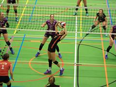 1B260991 (roel.ubels) Tags: vv utrecht eurosped galgewaard volleybal volleyball 18 finale nationale beker