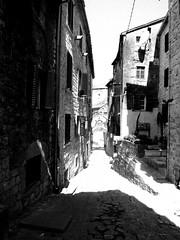 IMG_5399 (maru.hvozdecka) Tags: guca trumpet festival balkan music serbia montenegro krka dubrovnik kotor oldtown unesco gipsy tara bridge fortress church summer waterfalls