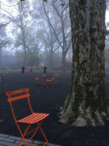 Clark Park Tai Chi on a foggy Thursday morning