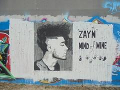 zayn mind of mine (en-ri) Tags: zayn malik one direction nero bianco mani hands impronte torino wall muro graffiti writing ritratto portrait profilo parco dora grigio