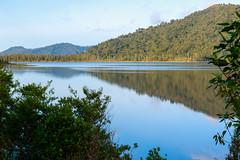 Reflejos en el Lago Ianthe (Andrs Guerrero) Tags: ianthe lago lake lakeianthe newzealand nuevazelanda oceana westcoast agua reflejo reflejos reflection reflected mirror espejo azul blue nature naturaleza paisaje landscape airelibre