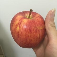 好不容易吃一个苹果 (zikay's photography from bizinsz.net) Tags: apple 苹果