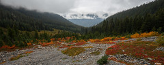 Fall colors on the trail to Easy Pass (keithc1234) Tags: fallcolors mountain landscape clouds hiking trail northcascades