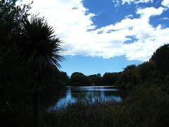 The Groynes, Christchurch (Spreydon) Tags: thegroynes christchurch groynes