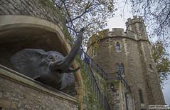 Tower of London (Danno KaBlammo) Tags: europe danny bourque 2016 uk british england london britain gb great united kingdom brits english tower medieval