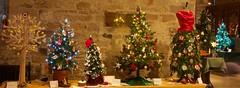 Christmas Tree Festival (ianwyliephoto) Tags: standrewschurch christmastreefestival 2016 corbridge christmas lights twinkle festive tynevalley tynedale northumberland