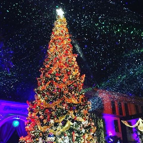 Paramount Studios tree lighting to night was so beautiful! @thefoodmatters @paramountpics #eventlife #girlboss #staffing  #servers #bartenders #hollywood #holidays #200ProofLA #200Proof