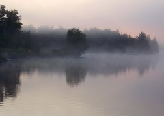 dawn (the_station_cat) Tags: trees mist lake canada reflection water dawn lac algonquin