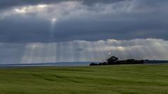 Sunrays breaking through clouds; Durchbrechende Sonnenstrahlen (16:9)