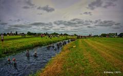 Going 2 Garnwerd,Braggeltocht,Mud-Run,Groningen,the Netherlands,Europe (Aheroy(2Busy)) Tags: trees holland art water netherlands dutch archi