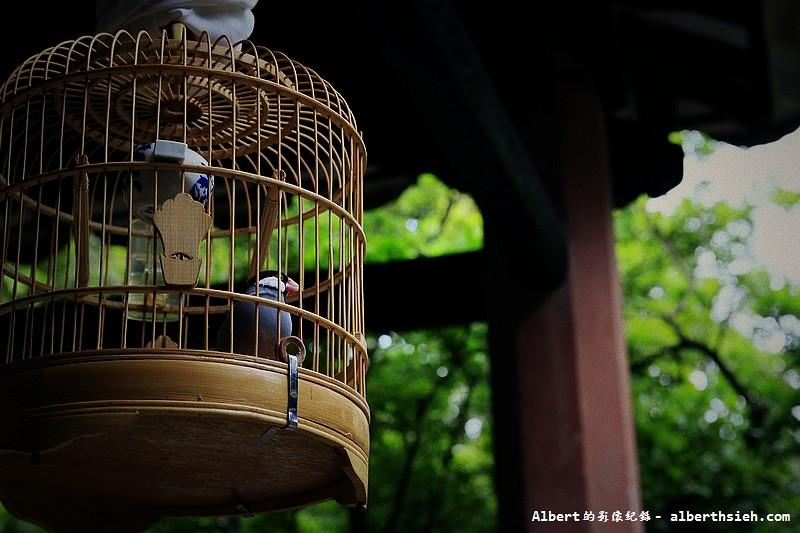 【古宅園林】廣東東莞 (8)
