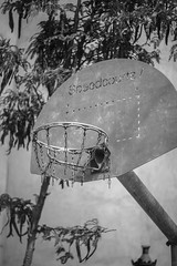 Street Basket (Oscar.vng) Tags: barcelona street bw blancoynegro canon blackwhite foto bcn streetphotography bn fotografia barna fotografiacallejera 60d oscarvng osanchezphoto