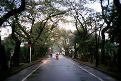 (w.wei) Tags: camera film tokyo fuji olympus xa xtra