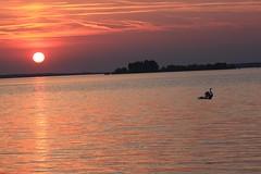 20100628_855 (Grardnat) Tags: nature canon de soleil coucher lac der oiseau cygne