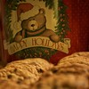 """Come on it, the Holidays are waiting!"" (DigitalDoug - 攝影) Tags: christmas holiday effects nik happyholidays chocolatechip 8"" ""adobe ""perfect canon5dmii canonef100mmf28lmacroisusm colorefexpro4 cc6"""