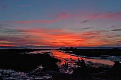 Fir Island Sunset (sunrisesoup) Tags: sunset usa mountains reflection fall river conway wa skagit pugetsound olympics novermber olympicmountains southfork firisland 2013
