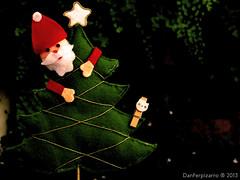 Y diciembre a llegado - And December arrived (Danferpizarro) Tags: chile bw white black flores color blanco luz canon de point la coquimbo calle shot y monumento negro bicicleta bn iso perro cruz gato vida caminar balance animales juego region iv siempre por recuerdos blancos exposicin ahp compacta sx160 danferpizarro