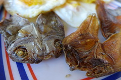Dangit and eggs - the best breakfast (puretuts) Tags: food fish breakfast crispy dried crunchy pinoy mindanao philippine driedfish cdo misamisoriental cagayandeoro dangit misamis bulad