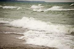 Lake Michigan (Pahz) Tags: bird beach water waves seagull horizon scenic lakemichigan greatlakes whitecaps kenoshawi