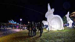 Vivid_Sydney_2014_6 (&drew) Tags: night sydney vivid australia circularquay newsouthwales rabbits sydneyharbour sydneyoperahouse