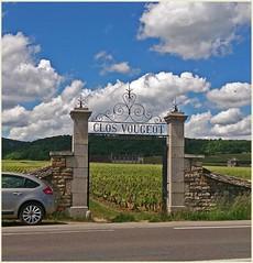 Burgundy France Vinyard (GABOLY) Tags: france burgundy may vineyards 2014