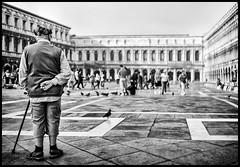 watching san marco piazza (Lukas_R.) Tags: leica q typ116 28mm f17 street bw venedig venecia venezia san marco piazza people travel europa