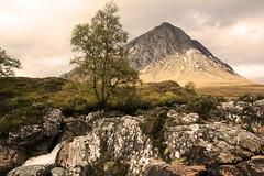 Buchaille Etive Mor (Geordie1970) Tags: buachallieetivmor argyle glencoe guardianoftheglen scottishhighlands scottishlandscape scotlandscountryside scottishmountain geordie1970 nikon nikon1024mm nikond7100 sepia
