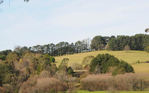 64 Moresby Hill Road, East Kangaloon NSW