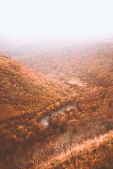 View into the Valley (Manadh) Tags: monsaltrail monsaldale derbyshire peakdistrict england manadh pentax k3 sigma autumn fall landscape 1835mm mist