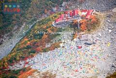 161103k (finalistJPN) Tags: autumn colors tent camping leaves presentingpicturesandphotos ppap kamikochi japanguide japanalps discoverjapan nationalgeographic discoverychannel traveljapan stockphotos