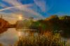 an English pond (grahamrobb888) Tags: nikond800 sigma20mm beaulieu hdr photomatix water sky reflection bluesky sunsetcolours newforest