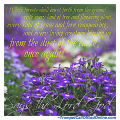 Proclaim The Name of The Lord - Letters From God and His Christ (GraceHead) Tags: trumpetcallofgodonlinecom trumpetcallofgod scripture christian yahushua endtimes