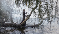 Lady raven (IrinaDzhul) Tags: people portrait popular girl woman water smoke black dress raven tree veil branches