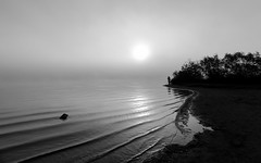 Into the sun #1 (Note-ables by Lynn) Tags: blackandwhite bw monochrome algonquinpark lakeoftworivers sunrise ripples shoreline outdoor