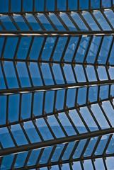 285 (kosmekosme) Tags: calatrava architecture architect modernarchitecture modern window windows steel construction cityofartsandsciences ciutatdelesartsilescincies ciutat arts city valencia spain blue lines sky geometric