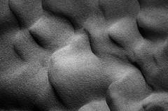 (Mateus Carvalho |) Tags: 2016 abstract aquitaine arcachon blackandwhite europe fotografia france mateuscarvalhofotografia nature nikond7000 place pretoebranco tamron textura texture trip voyage