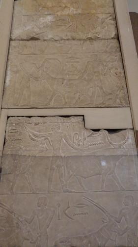 Hieroglyphs - Egyptian Museum