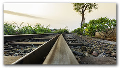 The curving train tracks on Kailasagiri Hill, Vizag (KS Photography!) Tags: train track commuter communication crossing crossroad curving direction girder grass green hill landscape line loneliness lost nature pattern platform rail railroad railway road rusty station steel stone summer sunny thoroughfare transportation travel bush clamp clip cloud kailasagiri hilltop park beach country outdoor photography season sleeper scenics culture horizontal railwaytrack symmetry