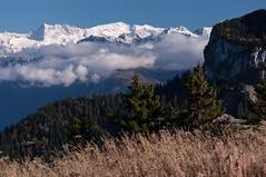 Division (Pierrotg2g) Tags: nature landscape paysage montagne mountain alpes alps pnr chartreuse nikon d90 tamron 70200