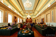 20161105-12-Open House Hobart - Town Hall floral show (Roger T Wong) Tags: 2016 australia hobart openhouse rogertwong sel1635z sony1635 sonya7ii sonyalpha7ii sonyfe1635mmf4zaosscarlzeissvariotessart sonyilce7m2 tasmania townhall architecture building floraldisplay