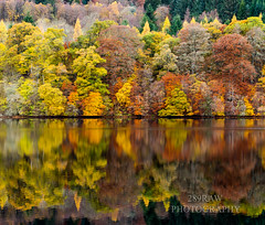 Autumn reflections. (289RAW) Tags: scotland landscape loch faskally reflections 289raw perthshire autumn